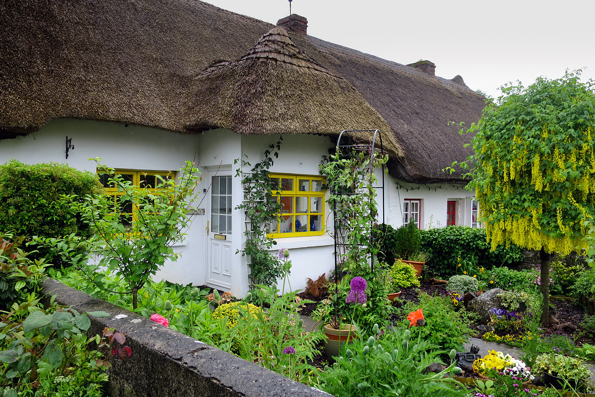 Many of the shops - and even private homes- have the thatched roofs. They were once part of a huge estate called Dunraven.