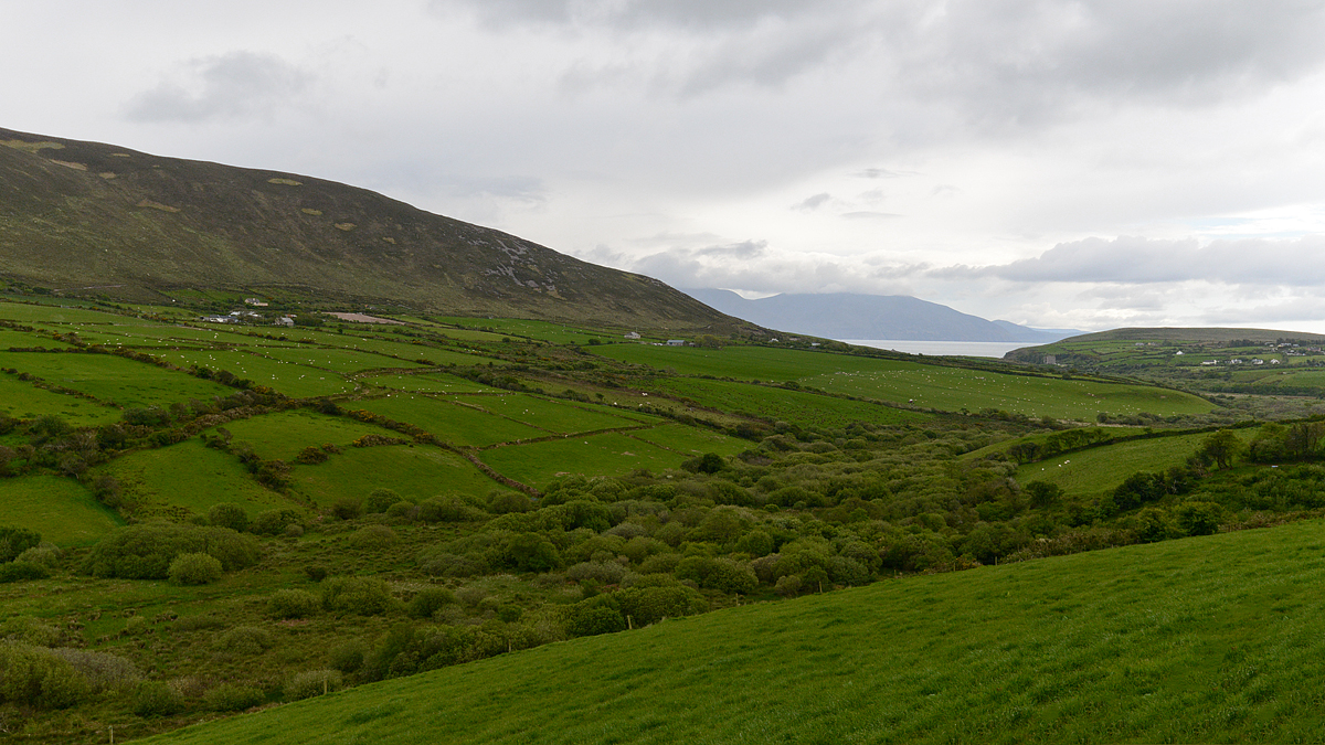 Dingle Peninsula (Irish: Corca Dhuibhne)
