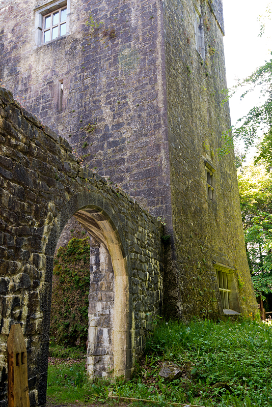 Hidden among the trees of Dunsandle is an old castle. It dates from the 15th century and is one of almost 20 castles in the vicinity.