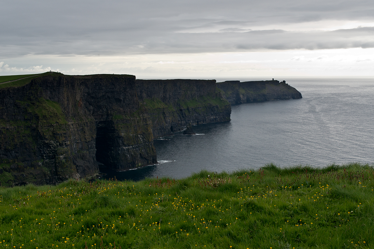 Springtime at the Cliffs of Moher.