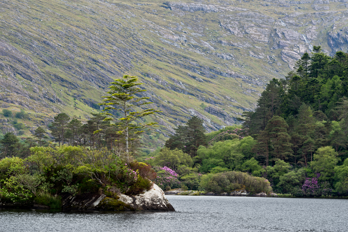 Glanmore Lake on the Beara Peninsula...