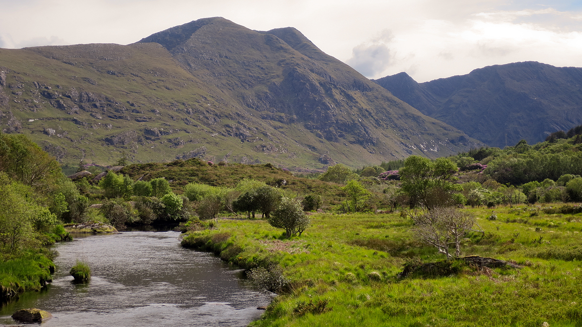 Along the River Cronshaugh near Glanmore Lake in County Kerry.